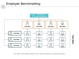 Employee Benchmarking Ppt Powerpoint Presentation Gallery Professional Cpb