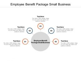 Employee Benefit Package Small Business Ppt Powerpoint Presentation Topics Cpb