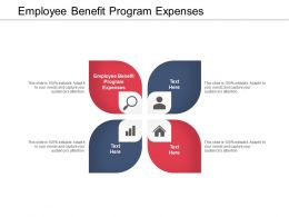 Employee Benefit Program Expenses Ppt Powerpoint Presentation File Structure Cpb