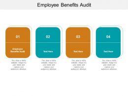 Employee Benefits Audit Ppt Powerpoint Presentation Portfolio Graphics Design Cpb