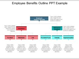 Employee Benefits Outline Ppt Example