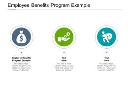 Employee Benefits Program Example Ppt Powerpoint Presentation Gallery Maker Cpb