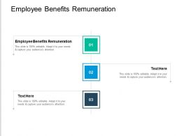 Employee Benefits Remuneration Ppt Powerpoint Presentation Gallery Aids Cpb