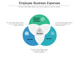 Employee Business Expenses Ppt Powerpoint Presentation Summary Background Cpb