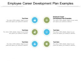 Employee Career Development Plan Examples Ppt Powerpoint Presentation Infographics Elements Cpb