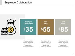 Employee Collaboration Ppt Powerpoint Presentation File Microsoft Cpb