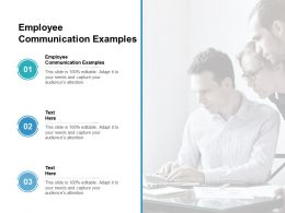 Employee Communication Examples Ppt Powerpoint Presentation Icon Graphics Tutorials Cpb