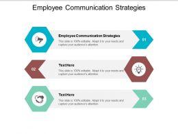 Employee Communication Strategies Ppt Powerpoint Presentation Portfolio Format Cpb