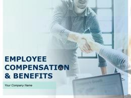 Employee Compensation And Benefits Powerpoint Presentation Slides