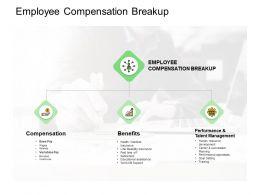 Employee Compensation Breakup Benefits Ppt Powerpoint Presentation Model Outline