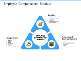 Employee Compensation Breakup Performance Ppt Powerpoint Presentation Introduction