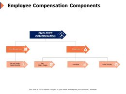 Employee Compensation Components Business Ppt Powerpoint Presentation Icon Slides