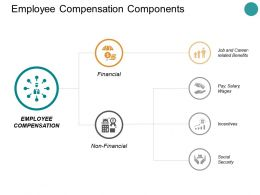 Employee Compensation Components Ppt Powerpoint Presentation Display