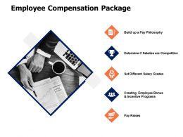 Employee Compensation Package Determine Powerpoint Presentation Design Templates