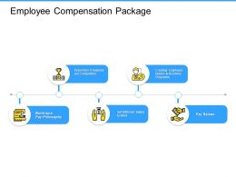 Employee Compensation Package Incentive Ppt Powerpoint Presentation Summary Samples