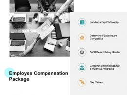Employee Compensation Package Ppt Powerpoint Presentation Templates