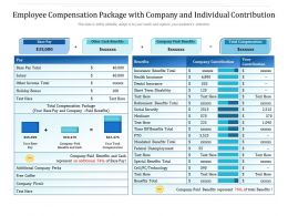 Employee Compensation Package With Company And Individual Contribution