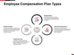 Employee Compensation Plan Types Straight Salary Ppt Powerpoint Presentation Tips