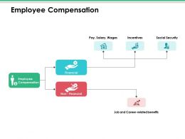 Employee Compensation Ppt Infographic Template Visual Aids