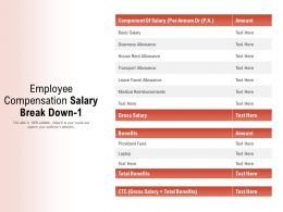 Employee Compensation Salary Break Down 1