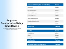 Employee Compensation Salary Break Down 3