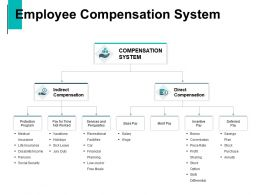 Employee Compensation System Commission Plan Ppt Powerpoint Presentation Visual Aids Ideas