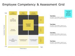 Employee Competency And Assessment Grid Low Performance Ppt Presentation Inspiration Rules