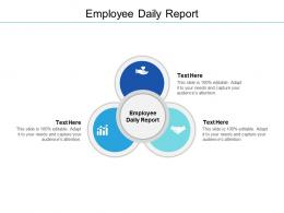Employee Daily Report Ppt Powerpoint Presentation File Vector Cpb