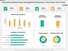 Employee Dashboard Age Demographics Breakdown Using Graph Donut Chart