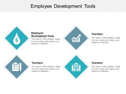 Employee Development Tools Ppt Powerpoint Presentation Infographics Outfit Cpb