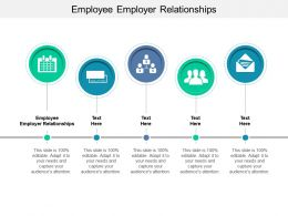 Employee Employer Relationships Ppt Powerpoint Presentation Slides Graphics Template Cpb