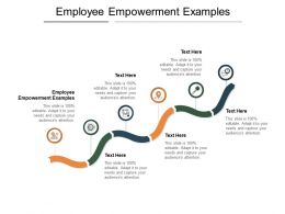 Employee Empowerment Examples Ppt Powerpoint Presentation Professional Design Cpb