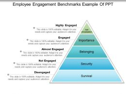 Employee Engagement Benchmarks Example Of Ppt