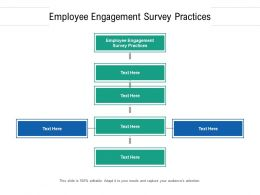 Employee Engagement Survey Practices Ppt Powerpoint Presentation Gallery Cpb