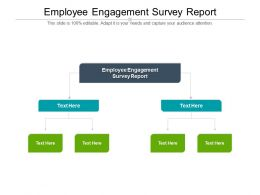 Employee Engagement Survey Report Ppt Powerpoint Presentation Slides Gridlines Cpb