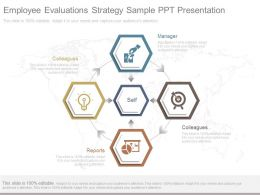 Employee Evaluations Strategy Sample Ppt Presentation