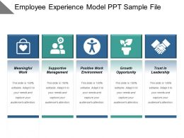 Employee Experience Model Ppt Sample File