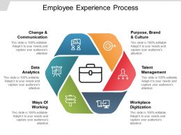 Employee Experience Process Ppt Samples Download