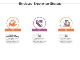 Employee Experience Strategy Ppt Powerpoint Presentation Outline Graphics Cpb