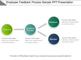 Employee Feedback Process Sample Ppt Presentation