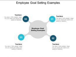 Employee Goal Setting Examples Ppt Powerpoint Presentation Styles Demonstration Cpb