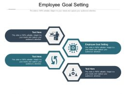 Employee Goal Setting Ppt Powerpoint Presentation Professional Example Topics Cpb
