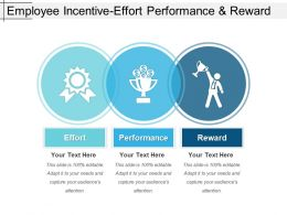 Employee Incentive Effort Performance And Reward