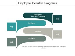 Employee Incentive Programs Ppt Powerpoint Presentation Summary Slide Download Cpb