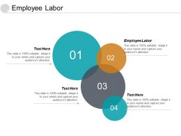 Employee Labor Ppt Powerpoint Presentation Slides Example Topics Cpb