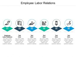 Employee Labor Relations Ppt Powerpoint Presentation File Visual Aids Cpb