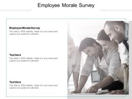 Employee Morale Survey Ppt Powerpoint Presentation Summary Portrait Cpb