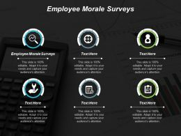 Employee Morale Surveys Ppt Powerpoint Presentation Portfolio Example Cpb