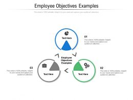 Employee Objectives Examples Ppt Powerpoint Presentation Model Clipart Images Cpb