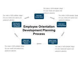 Employee Orientation Development Planning Process Ppt Icon